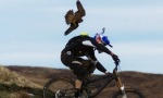Falke vs Mountainbike